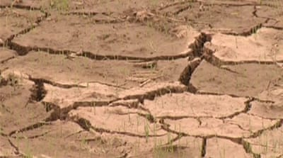 North Korea admits hit by severe drought