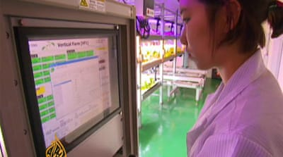 South Korea moving towards vertical farming