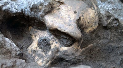 Skull fossil challenges evolutionary history