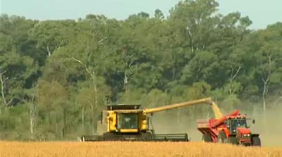Argentinians link pesticides to illnesses