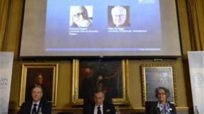 The Higgs Boson is central to particle physics that describes how the world is constructed, the Nobel jury said  [AFP]