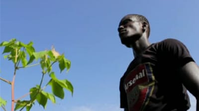 Senegal cotton farmers struggle to compete
