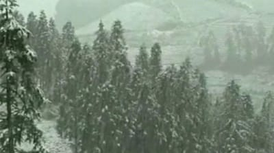 The wintry weather caused a five-hour traffic jam as people flocked to the mountains to see the snow [AP]