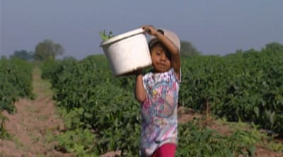 Mexico children shoulder state's labour woes