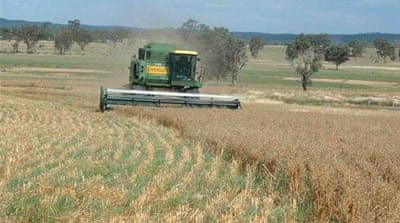 Pasture cropping: A regenerative solution from Down Under