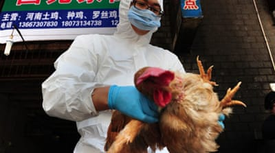 Bird flu spreads to new Chinese province