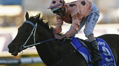 The race marked Black Caviar's 15th Group One victory to break the Australian record previously held by Kingston Town in 1982 [Reuters]