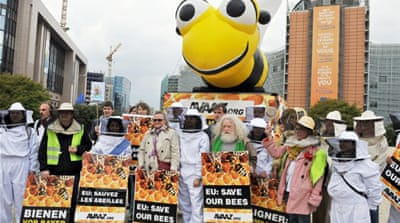 EU to ban pesticides linked to bee decline