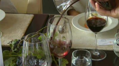Argentine wine industry thrives globally