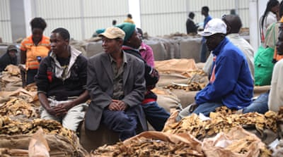Official facts and figures of Zimbabwe's food crisis are hard to ascertain [AP]