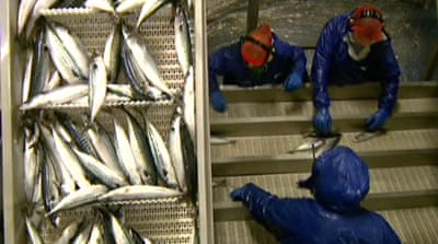 Faroe Islands challenge EU fishing sanctions