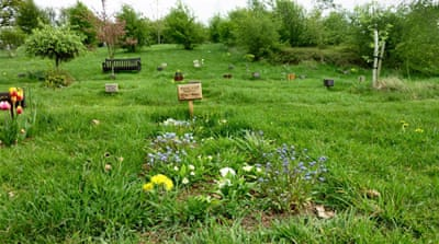 Green goodbyes: The growth of eco-burials