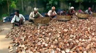 Coconuts lead to Kerala's economic boom