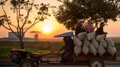 In Pictures: Growing food in North Korea