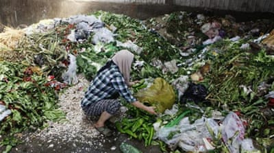 Thirty percent of the world's food wasted