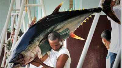 In Pictures: The decline of Philippine tuna