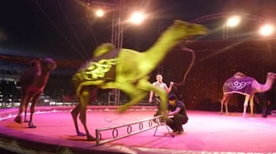 New-age circuses after Mexico bans animals