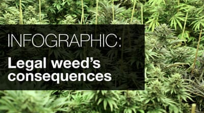 Infographic: Legal weed's consequences
