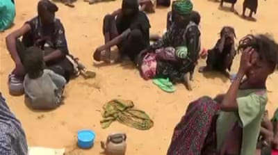 Malian refugees in Niger struggle to cope