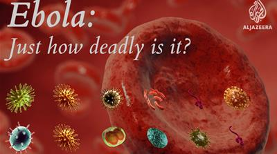 Infographic: Just how deadly is Ebola?
