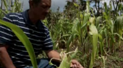 Guatemala battles devastating drought
