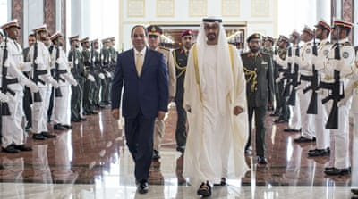 The UAE has supported Egyptian President Abdel Fattah el-Sisi's crackdown on the Muslim Brotherhood [Ryan Carter/AP]