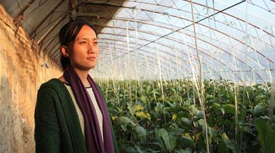 Thirty-three-year-old Yan is a trailblazer in Chinese agriculture and opened her farm, Shared Harvest, in 2012 [Katrina Yu/Al Jazeera]