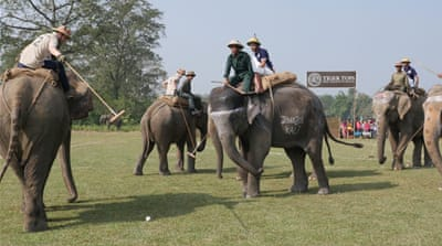 For sport, fun and charity: Elephant polo