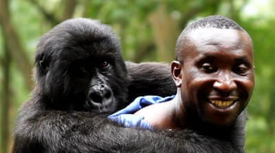 Tales from Virunga