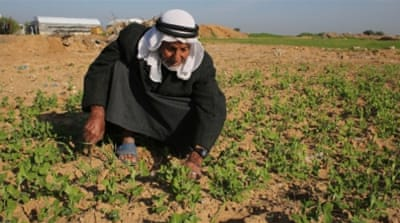 Gaza farmers are being 'particularly badly affected' by Israel's tight restrictions on their movement, according to rights group [Getty]