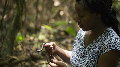 Saving Rare Species in the Seychelles