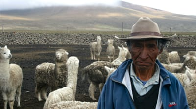 Pulling the wool over Peruvian shepherds' eyes