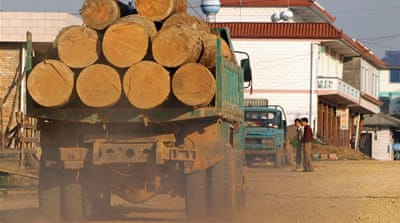According to Myanmar's environment ministry, 10,000 tons of illegal timber had been seized from loggers since January this year [EPA]
