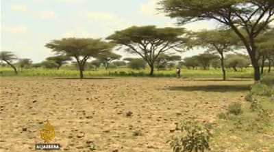 Ethiopia hit by worst drought in decades