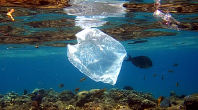 Only five percent of plastics are efficiently recycled [EPA]