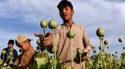 Afghanistan grows about 80 percent of the world's opium [Ghullamullah Habibi/EPA]