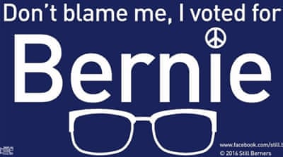 A word from Bernie voters: #DontBlameMeIVotedForBernie