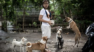 A special bond: The Balinese girl and her rescued dogs