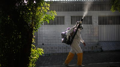 Understanding the Zika threat
