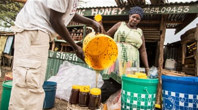 Dripping Gold: On the Hunt for Honey in Kenya