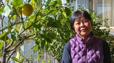 China's 'red princess' turned investigative journalist