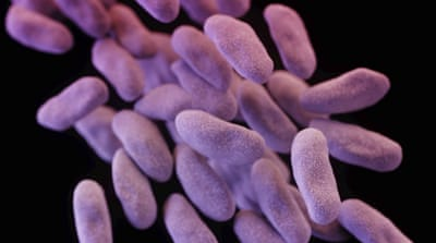 In the US, antibiotic resistance has been blamed for at least 23,000 deaths annually [Reuters]