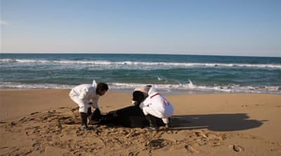 Libyan bodies wash up on shore