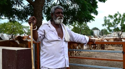 When old cows die at the cow shelter in Jam Kandorna, Dalit skinner Valji Madhvi collects their carcasses. He is expected to pay a donation of 100 rupees ($1.50) [Maya Prabhu/Al Jazeera]