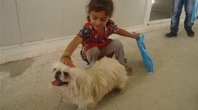 Animal therapy comforts traumatised Iraqi children