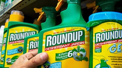 Study linking Roundup to serious disease fuels debate
