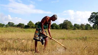 Sri Lanka hit by worst drought in decades