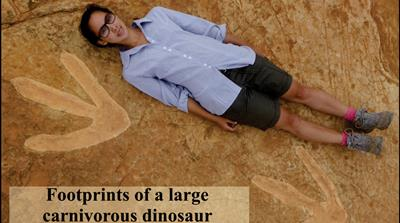 One of the largest dinosaur footprints found in Lesotho
