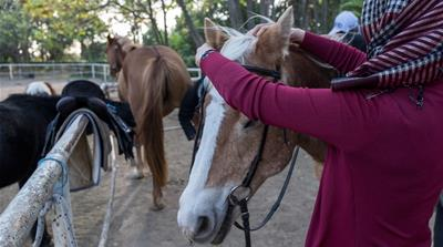 Child refugees in Greece ride horses to heal