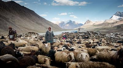 The last shepherdesses of Pamir in Pakistan